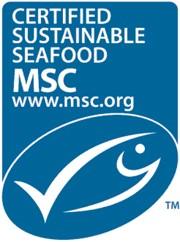 UK Government backs MSC programme