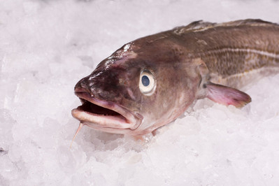 Fish and non-alcoholic drink prices spike again according to the latest CGA Prestige Foodservice Price Index