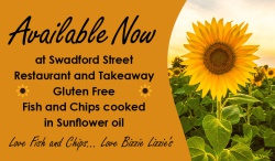 New Sunflower Oil Fryer at Bizzie Lizzies